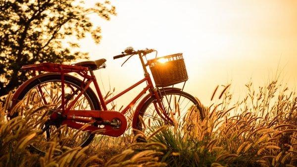 Bisiklet Temalı Duvar Kağıdı