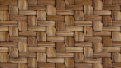 Bambu Desenli Duvar Kağıdı